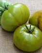 Cherokee Green, a New/Old Hybrid, (Two Heirloom Tomatoes as Parents)